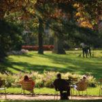 jardin luxembourg